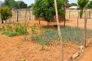 small-scale farming northern namibia